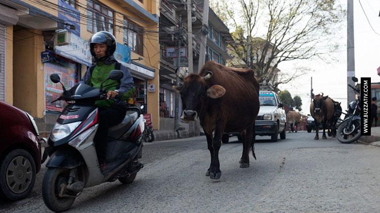 things happens in nepal